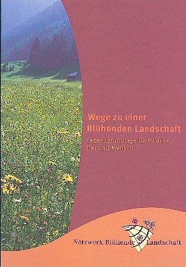 bluehende-landschaft